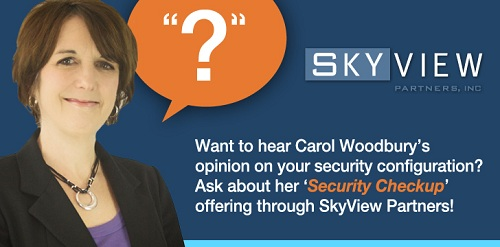 Security? See how SKYVIEW PARTNERS can help!